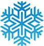 Zebra - ikona - Frozen